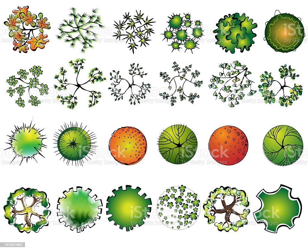 Set of colored treetop symbols, for architectural or landscape design vector art illustration