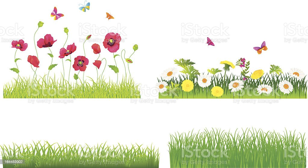 Set of flowers and green grass. Vector. royalty-free stock vector art
