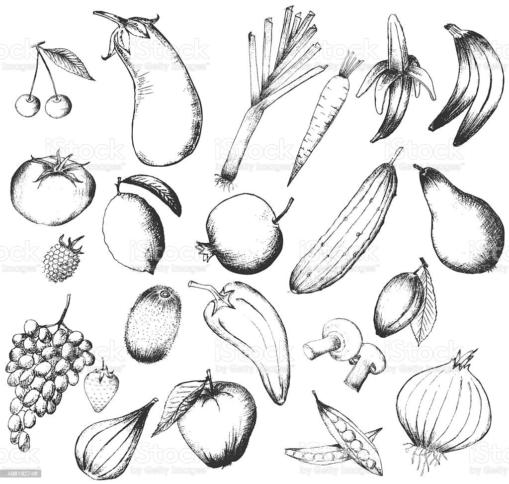 Set of  hand drawn fruits and vegetables vector art illustration