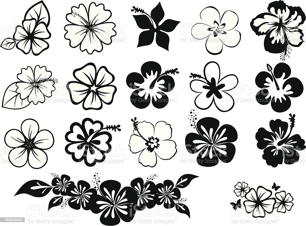 set of hibiscuses vector art illustration