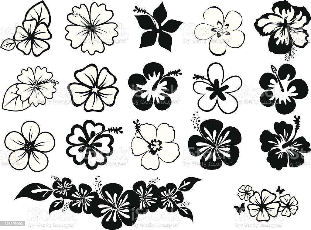 set of hibiscuses vector art illustration