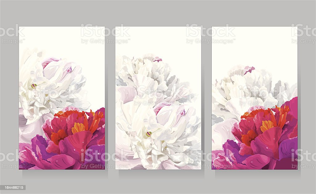 Set of peony greeting cards royalty-free stock vector art