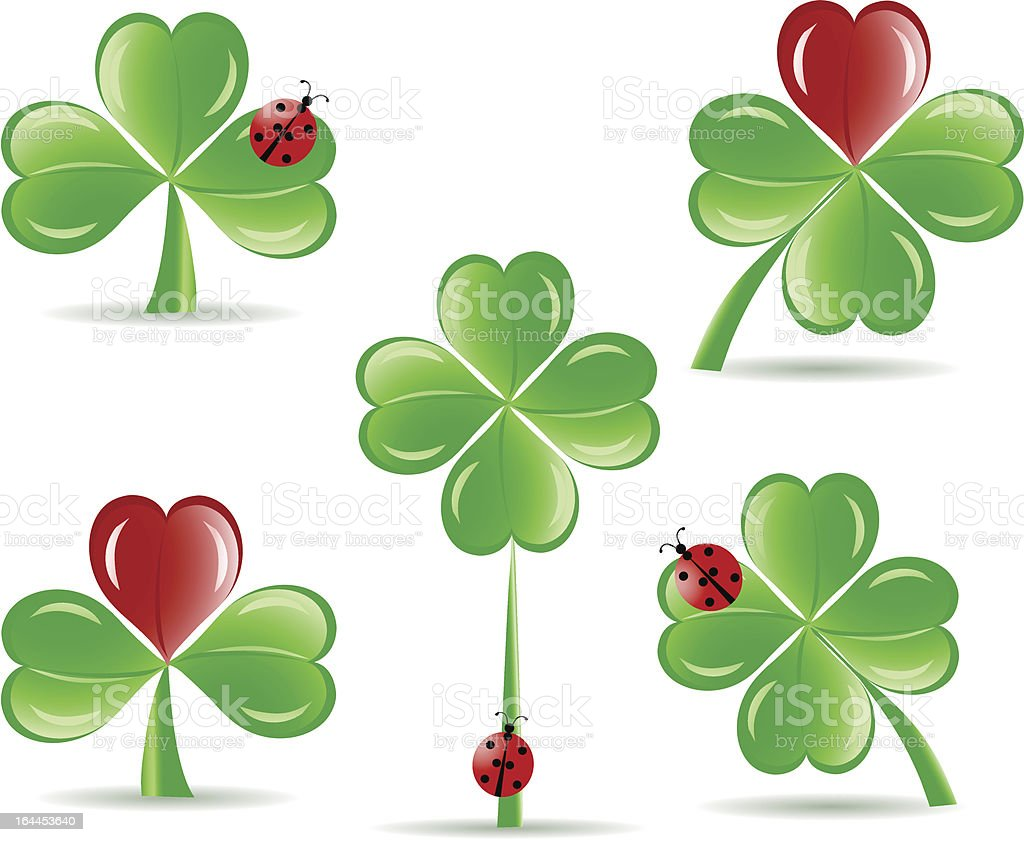 set of  the  shamrocks with four lucky leaves and ladybug royalty-free stock vector art