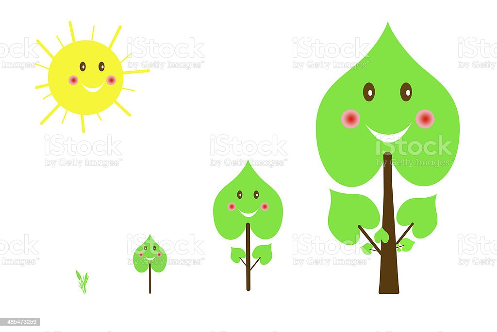 Set of  trees images from the germ to big tree royalty-free stock vector art
