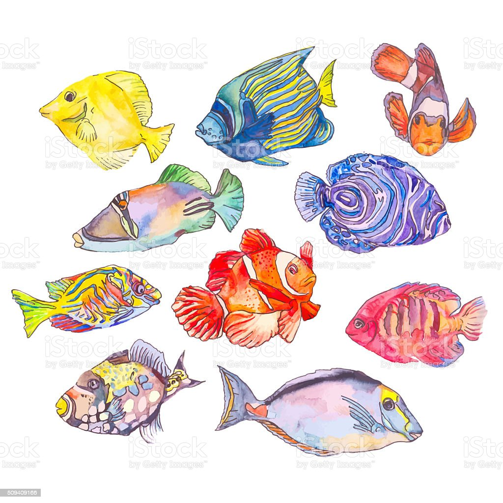 Set of tropical fishes stock photo