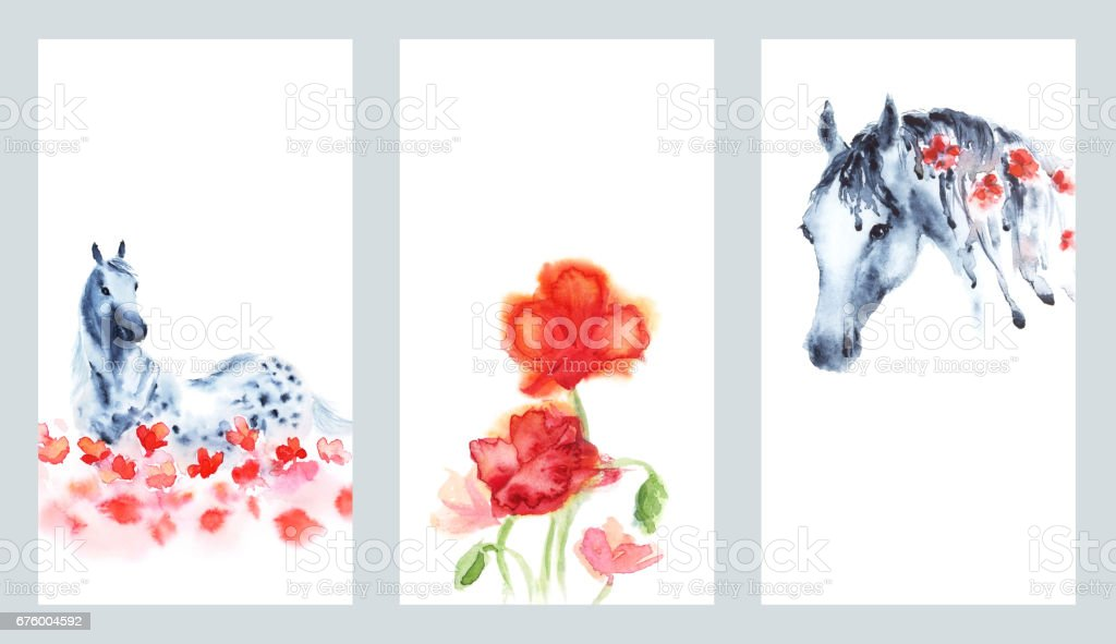 Set of watercolor hand painting cards with hand dapple grey horse and red poppies flowers on white. Hand drawn art background. vector art illustration