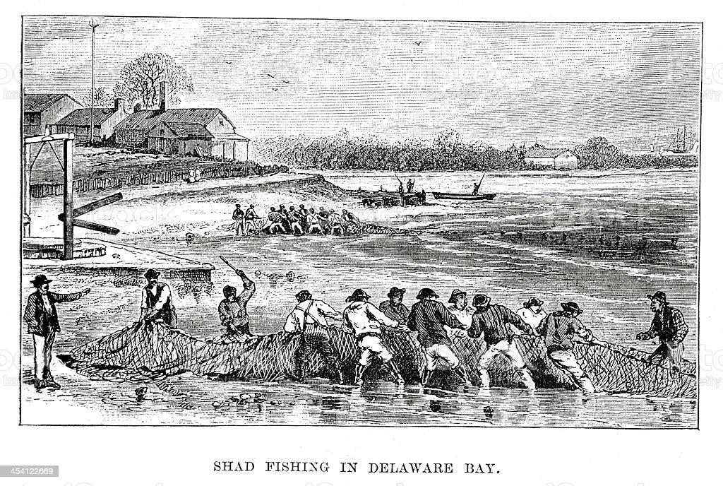 Shad fishing in Delaware Bay vector art illustration