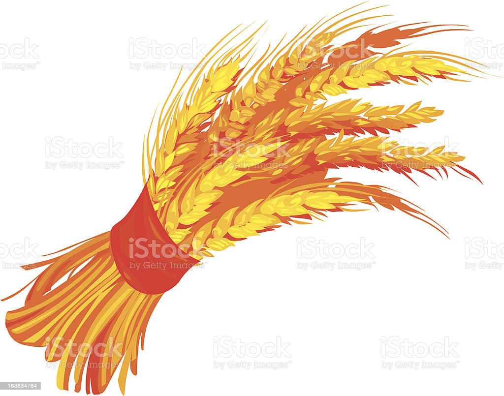 sheaf of wheat royalty-free stock vector art