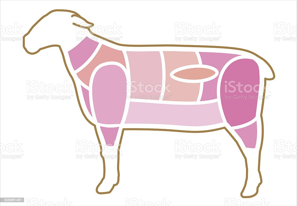 Sheep. Site of the meat vector art illustration