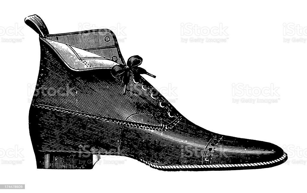 Shoe vector art illustration