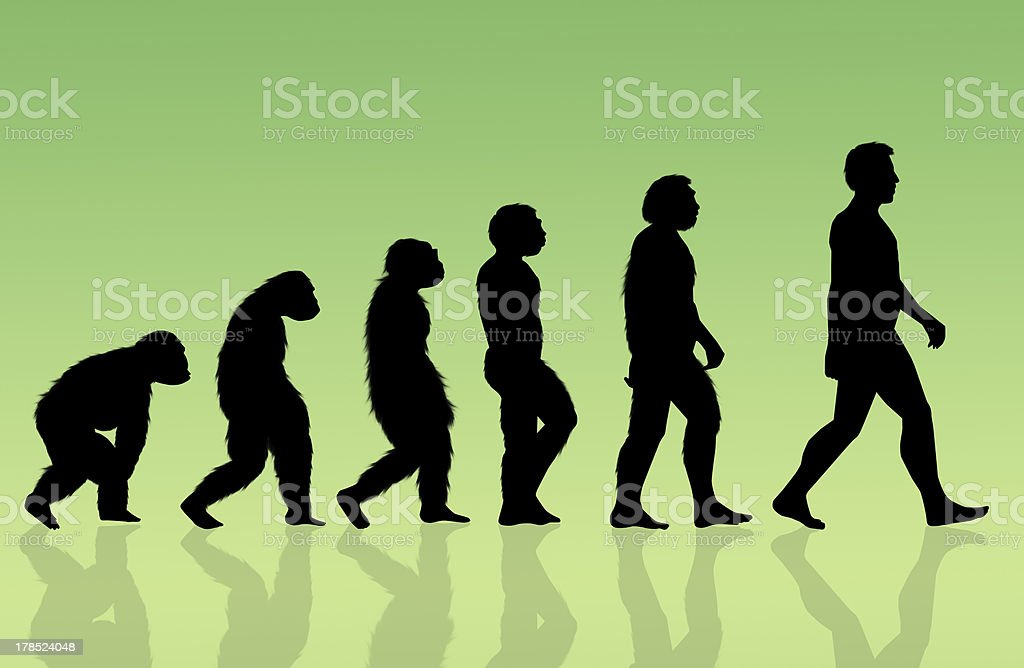 Silhouetted figures of the evolution process vector art illustration