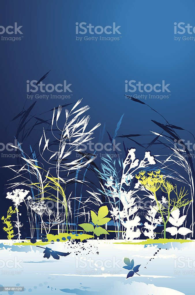 Silhouettes of grass, vector royalty-free stock vector art