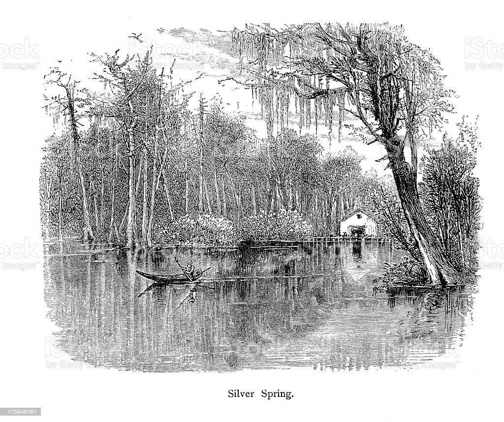 Silver Springs, Florida | Historic American Illustrations royalty-free stock vector art