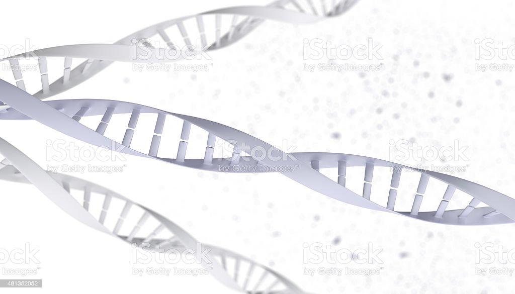 Simplified DNA molecular structure vector art illustration
