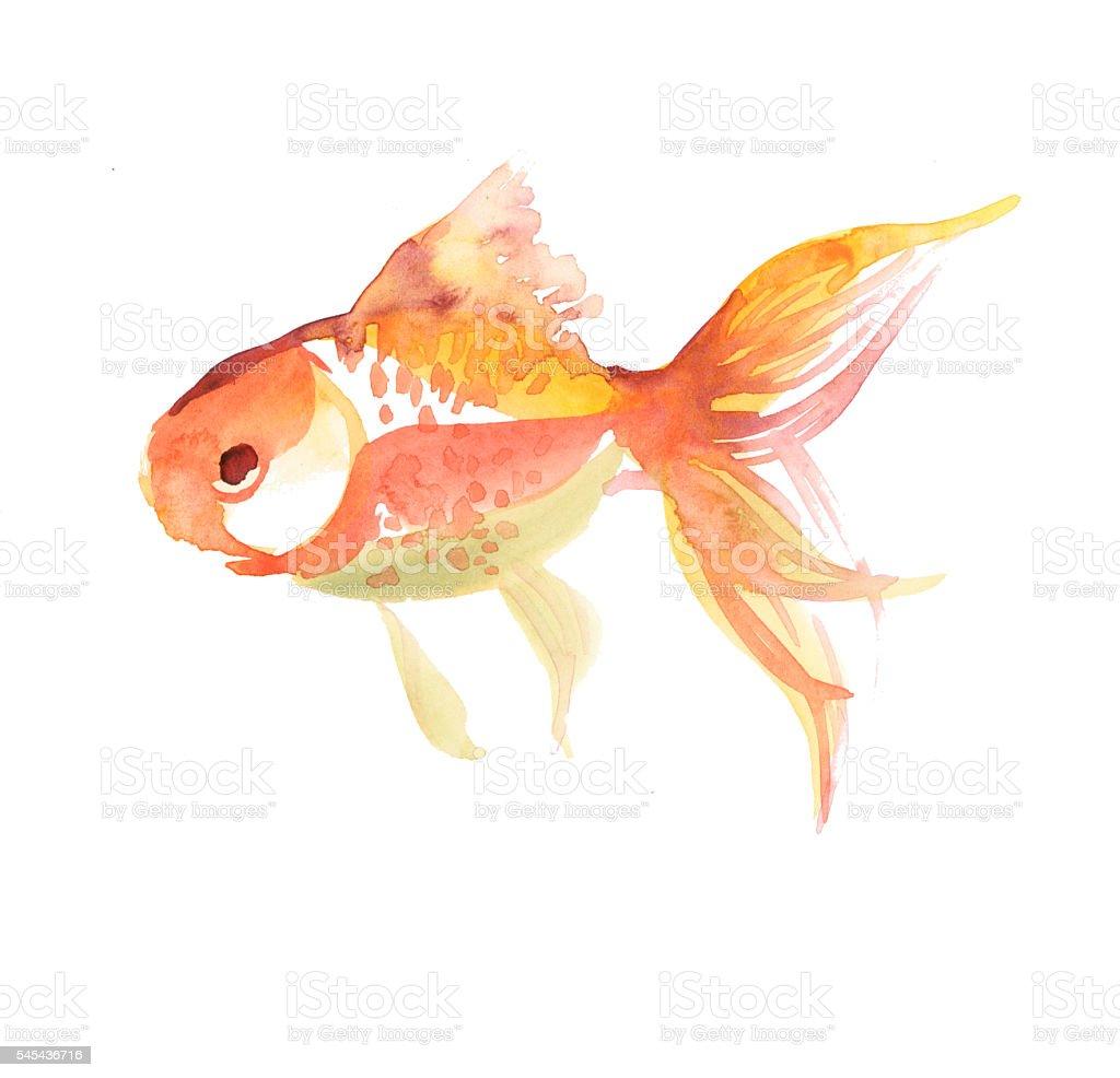 single fish isolated on white background. vector art illustration