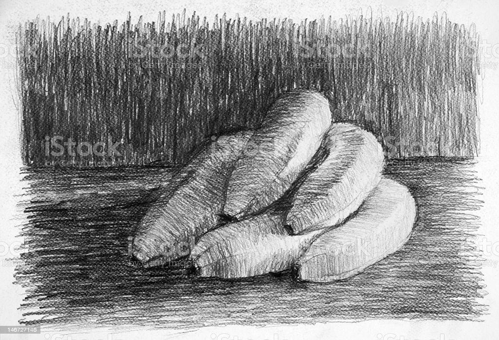 sketch from a bunch of bananas vector art illustration