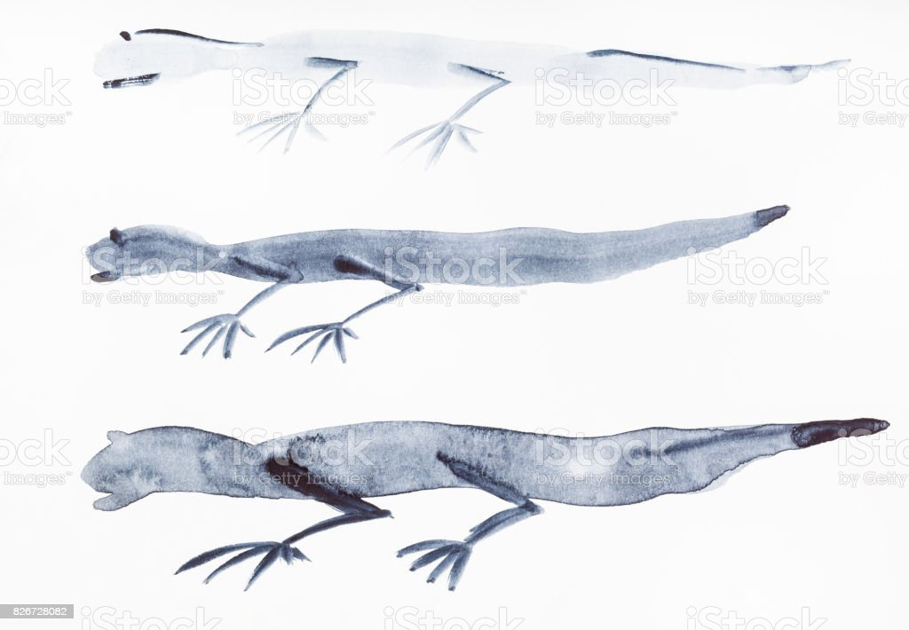 sketches of lizards on white paper vector art illustration