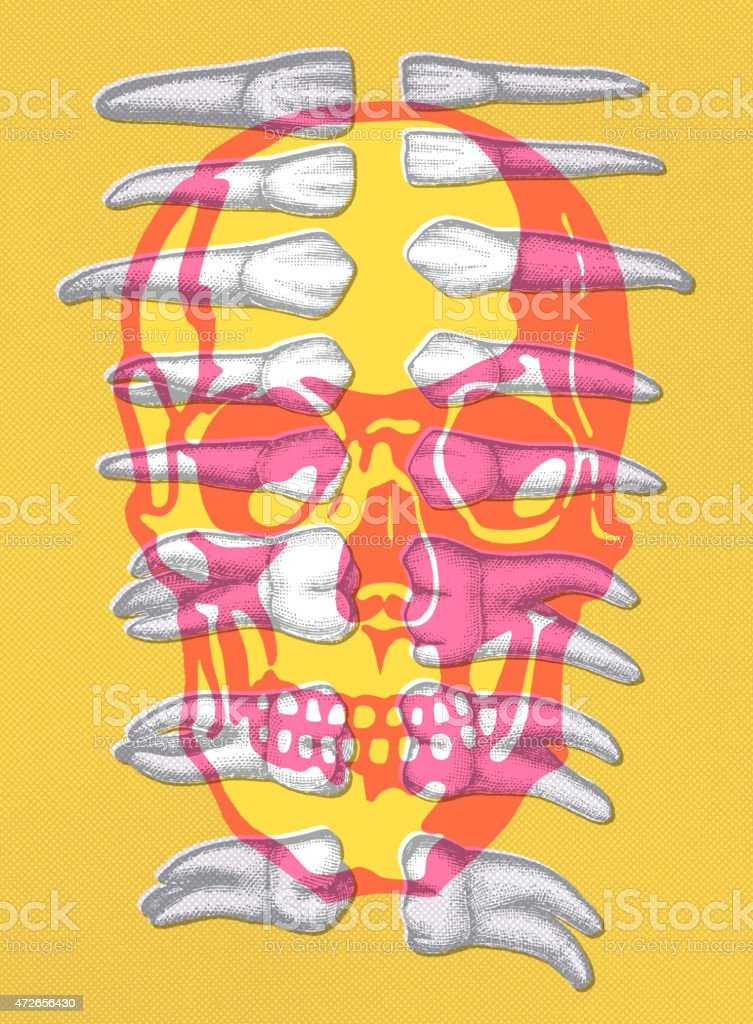 Skull and teeth vector art illustration