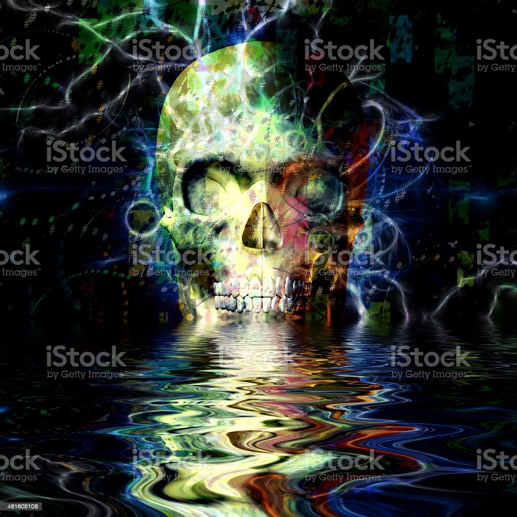 Skull Reflection vector art illustration