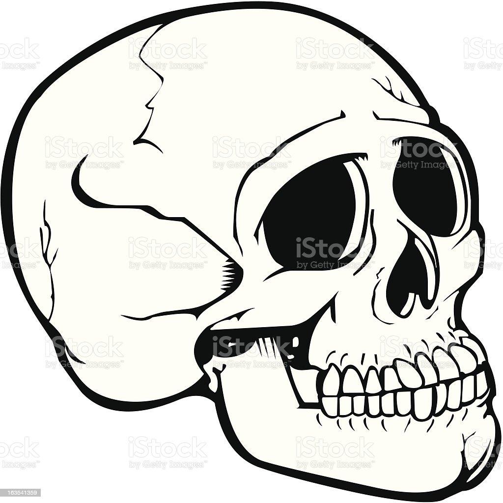 Skull9 royalty-free stock vector art