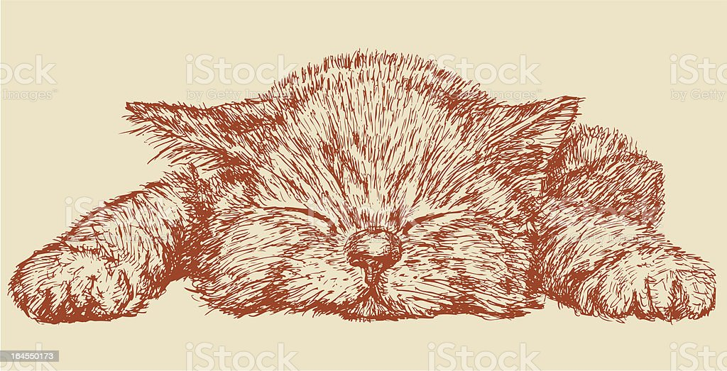 Sleeping kitten vector art illustration