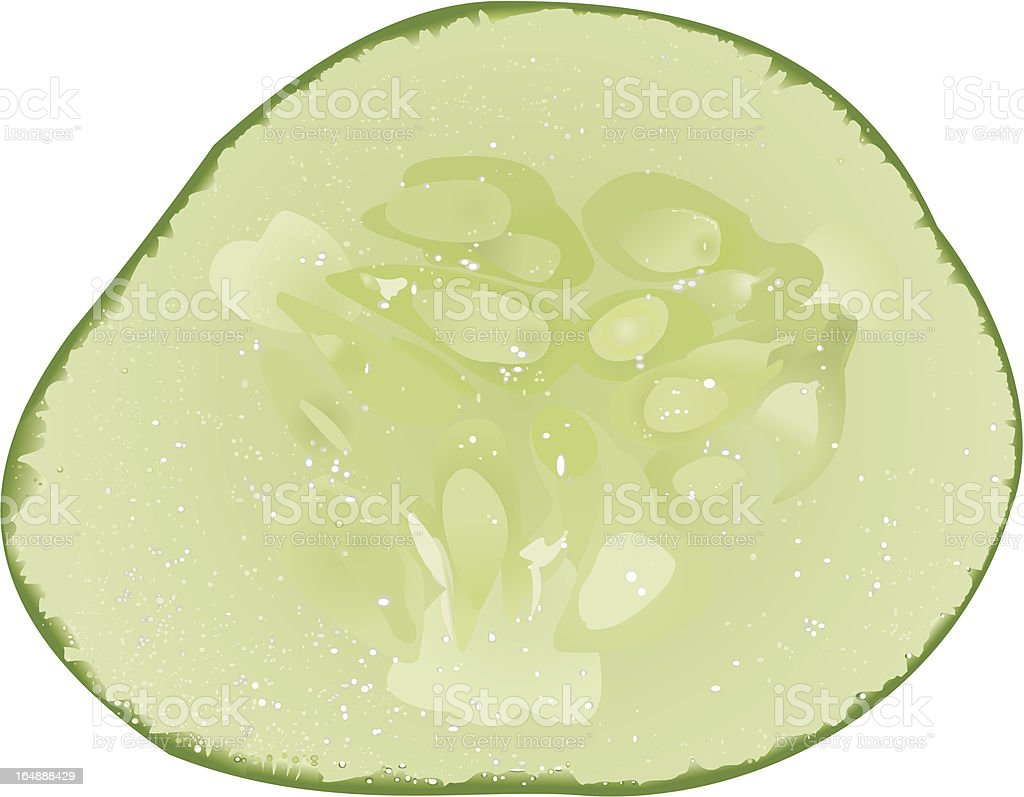 Slice of a cucumber royalty-free stock vector art