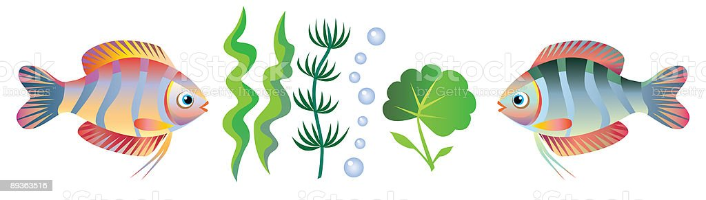 Small fishes and seaweed royalty-free stock vector art