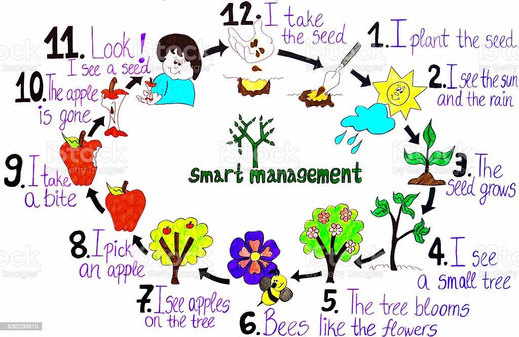 smart management  of an apple fruit ,drawing vector art illustration