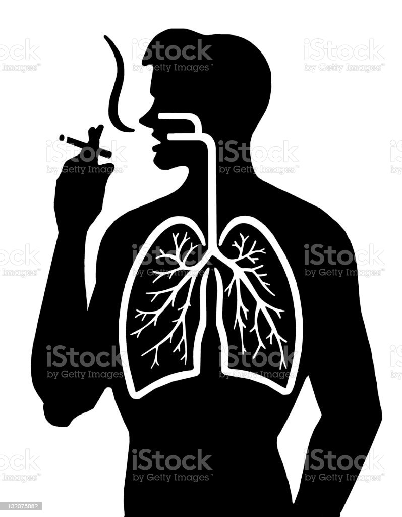 Smoking and Lungs royalty-free stock vector art