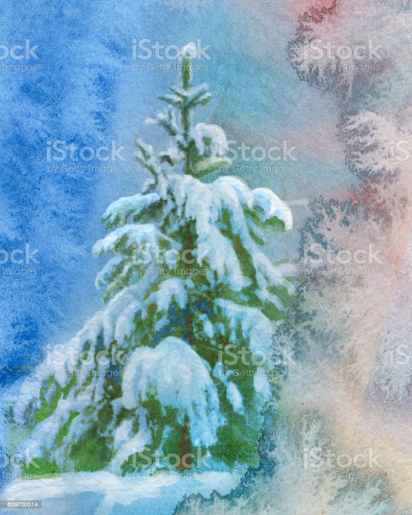 snowy spruce, watercolor painting vector art illustration