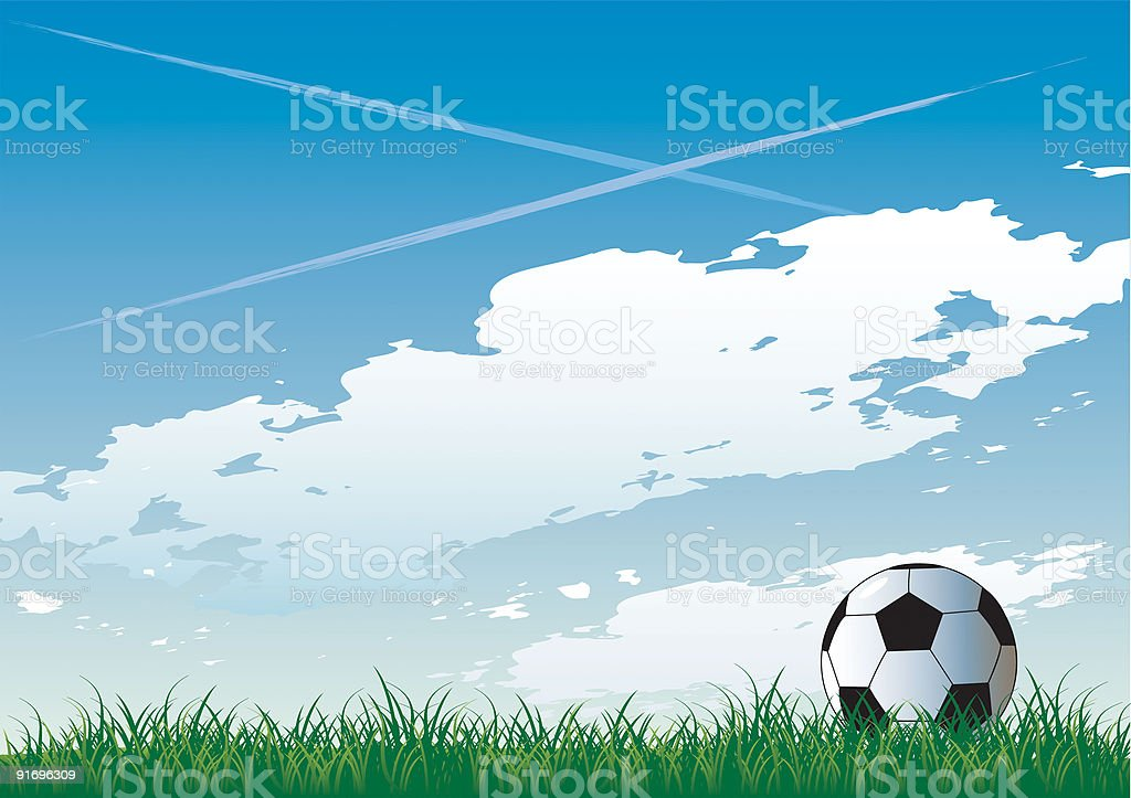 Soccer pitch royalty-free stock vector art