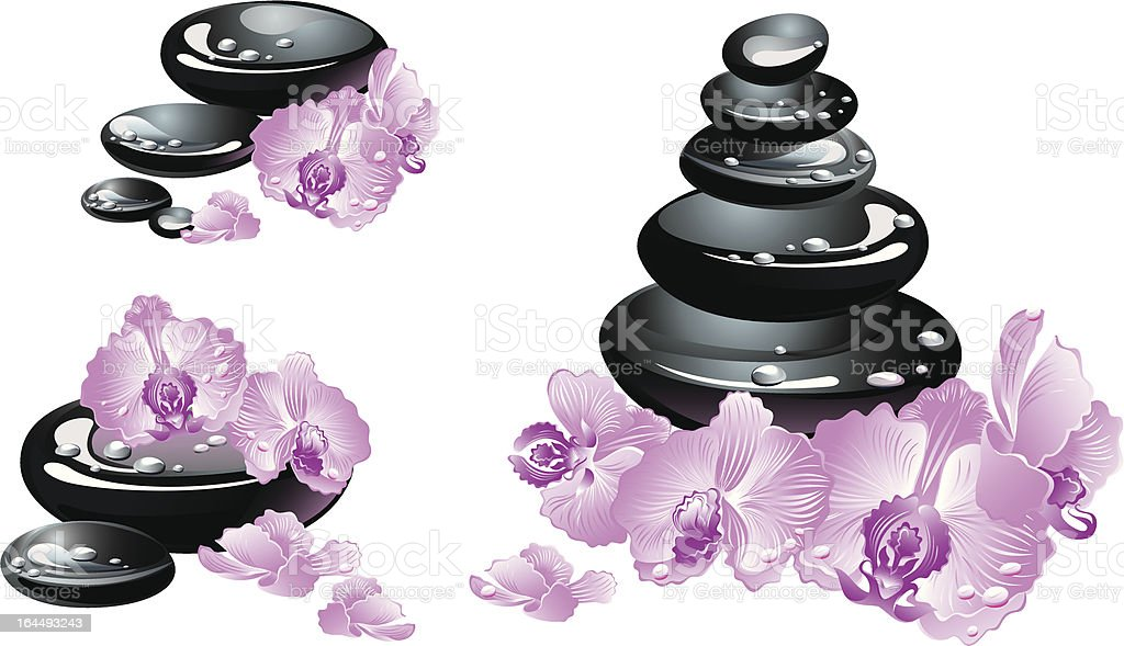 Spa stones and orchid flowers royalty-free stock vector art