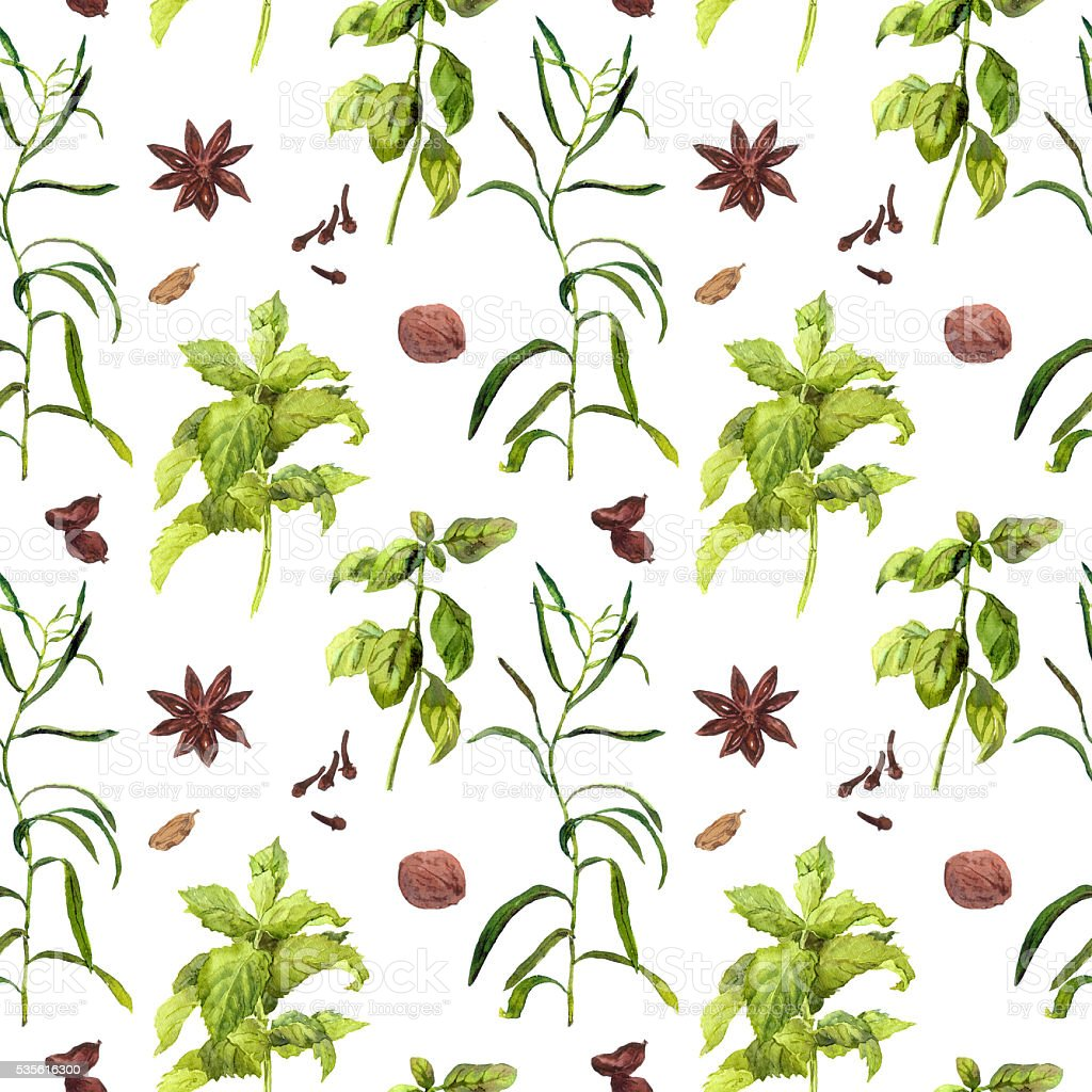 Species and herbal plants for kitchen. Repeated watercolor wallpaper. vector art illustration