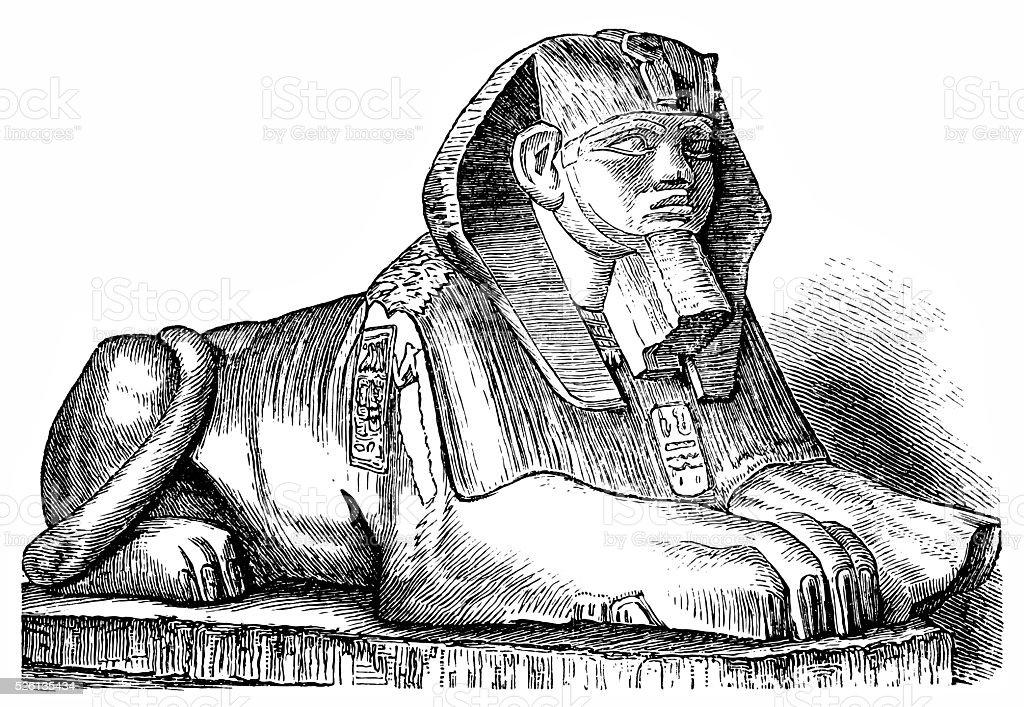 Sphinx vector art illustration