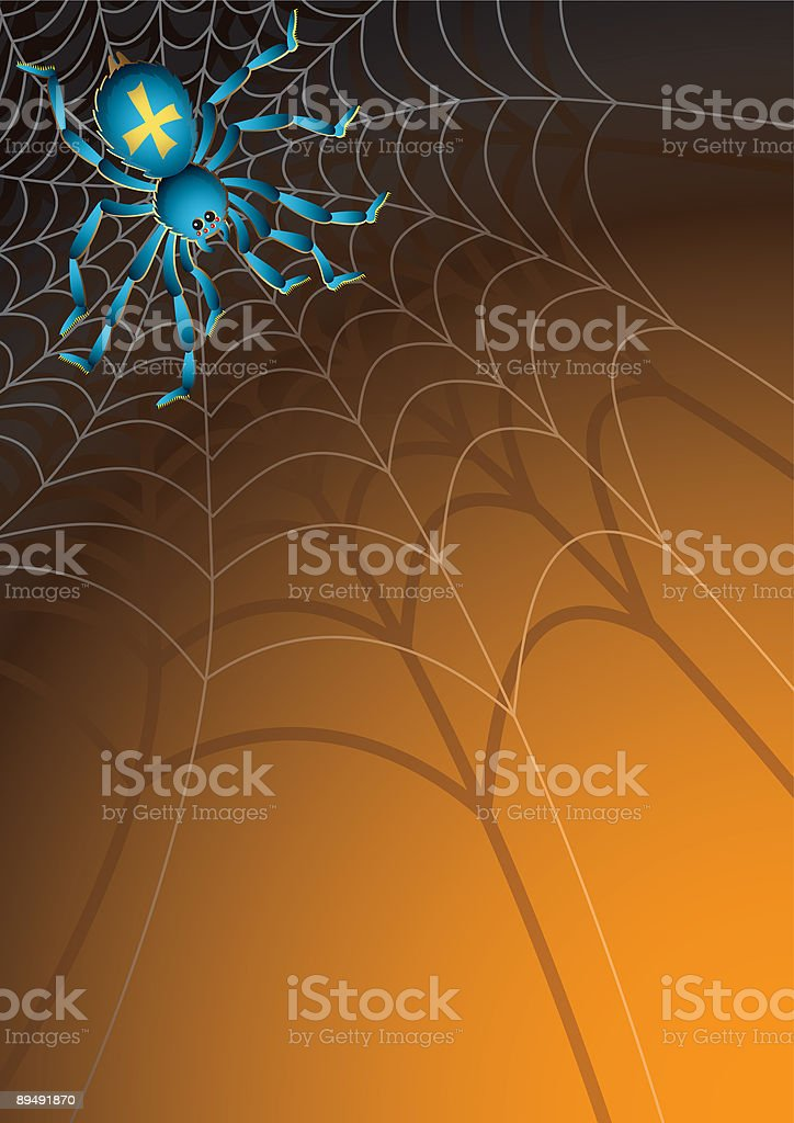 spider royalty-free stock vector art