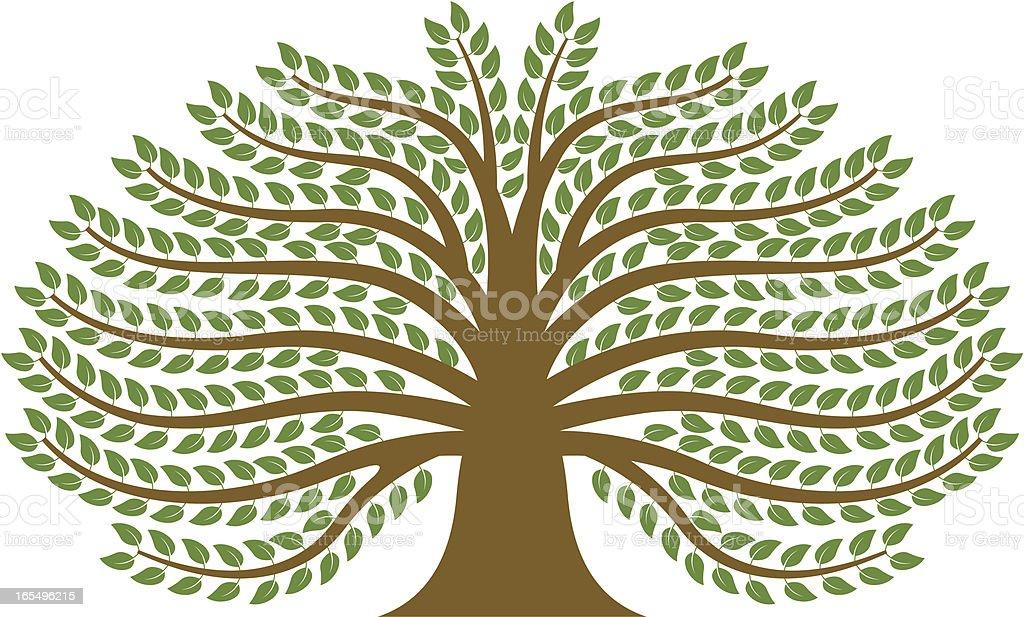 Spreading tree. vector art illustration