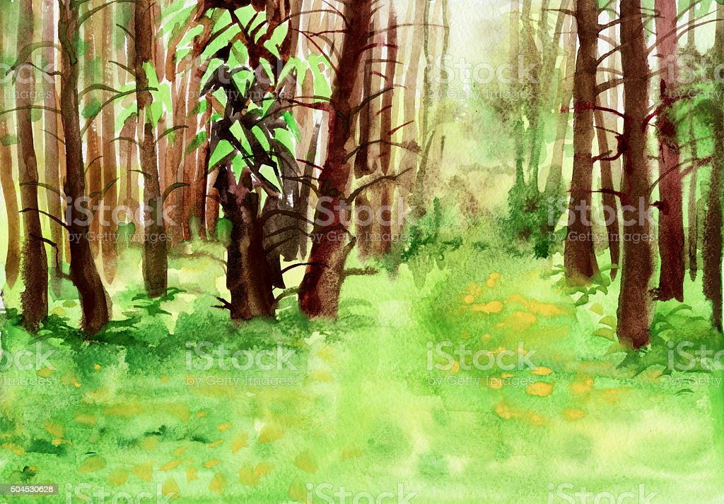 Spring forest watercolor painting vector art illustration