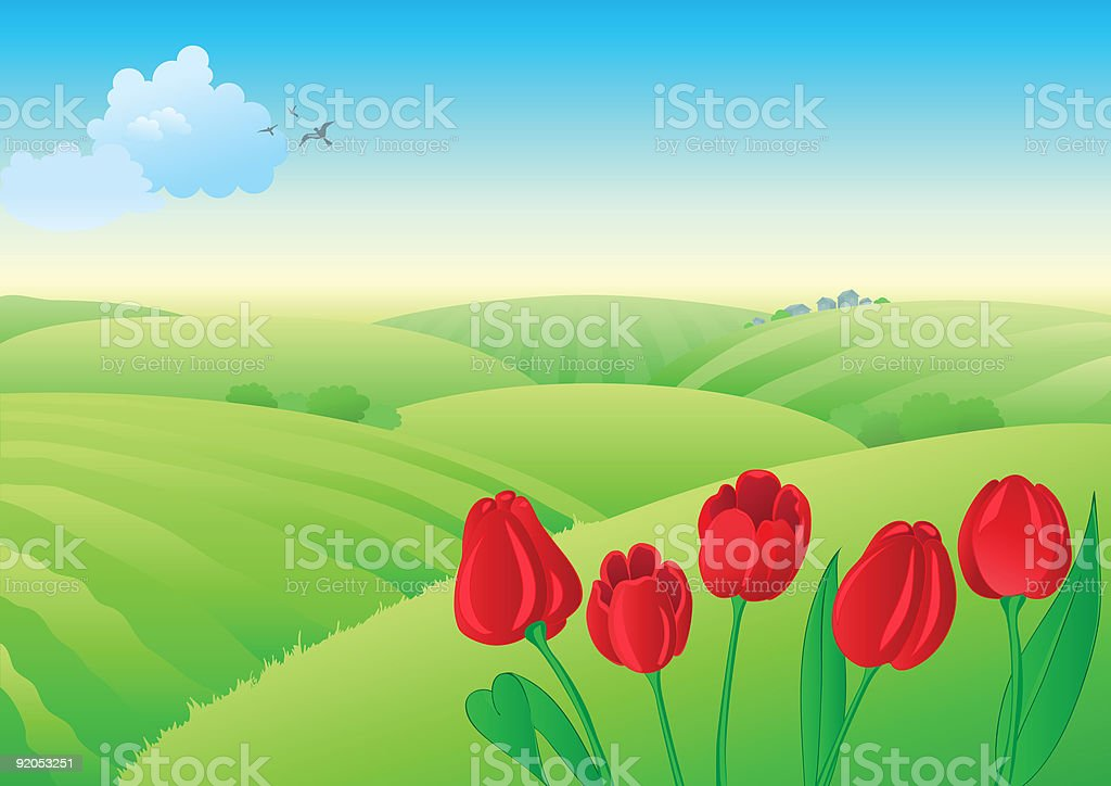 Spring landscape with red tulips. royalty-free stock vector art
