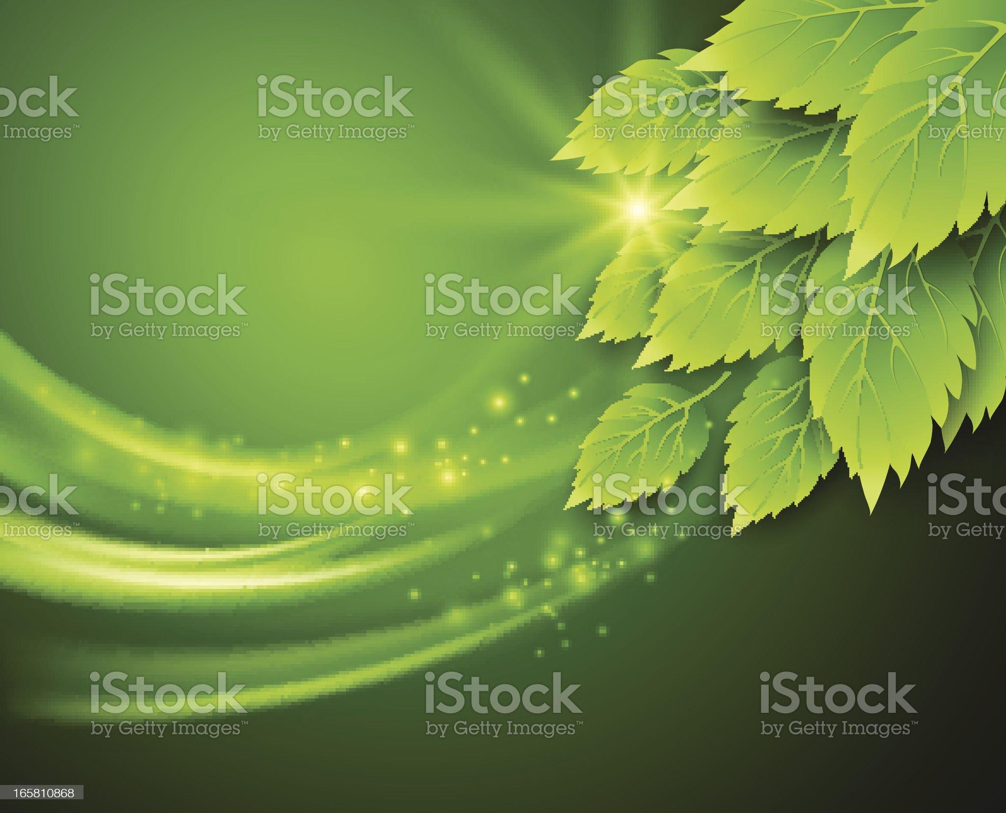 Spring leaf royalty-free stock vector art