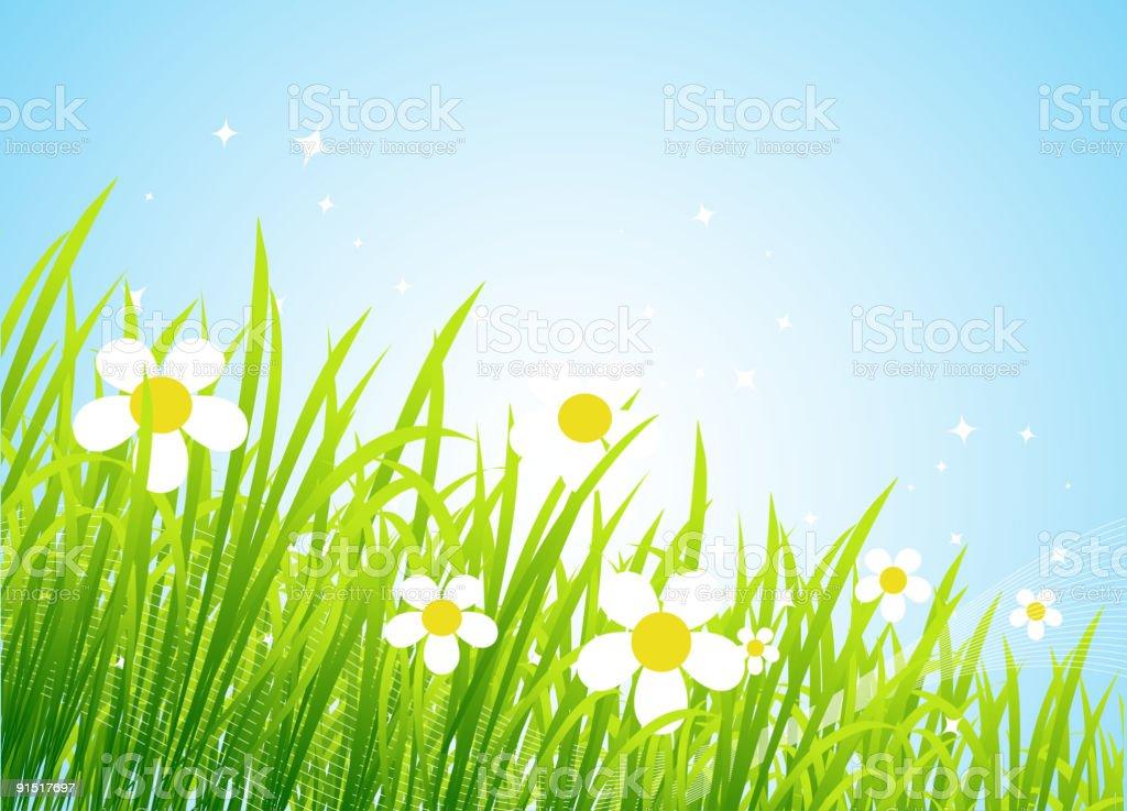 Spring meadow beautiful royalty-free stock vector art