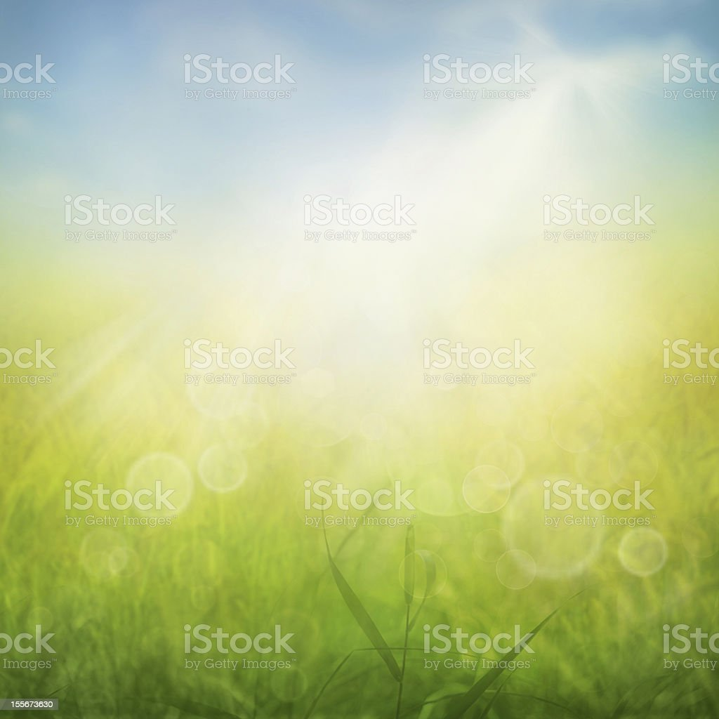 Spring or summer abstract nature background vector art illustration