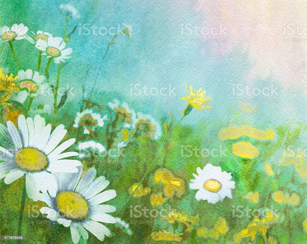 Spring watercolor background with daisies vector art illustration