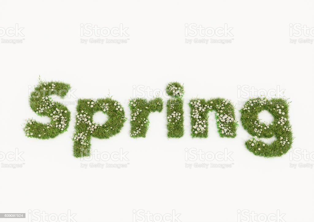 Spring word typed by flowers and grass vector art illustration