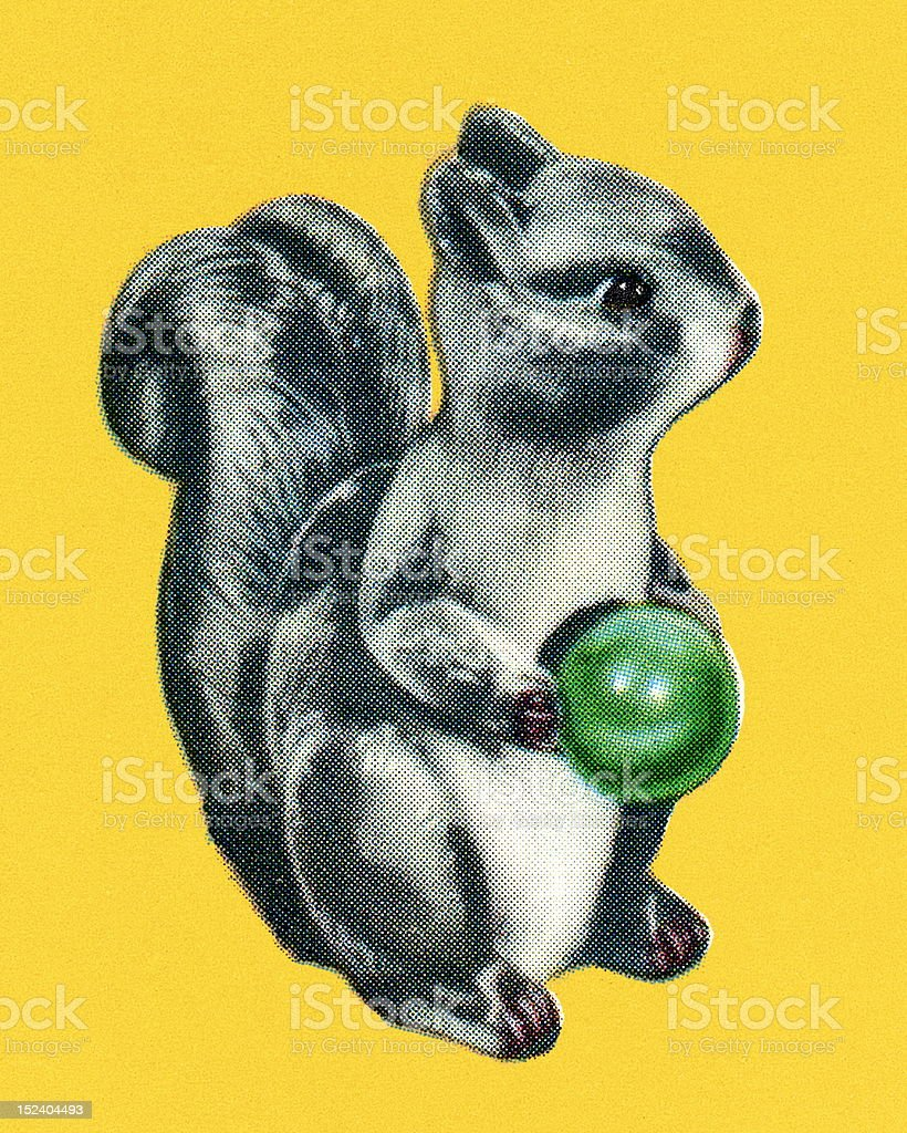 Squirrel Holding a Little Ball royalty-free stock vector art