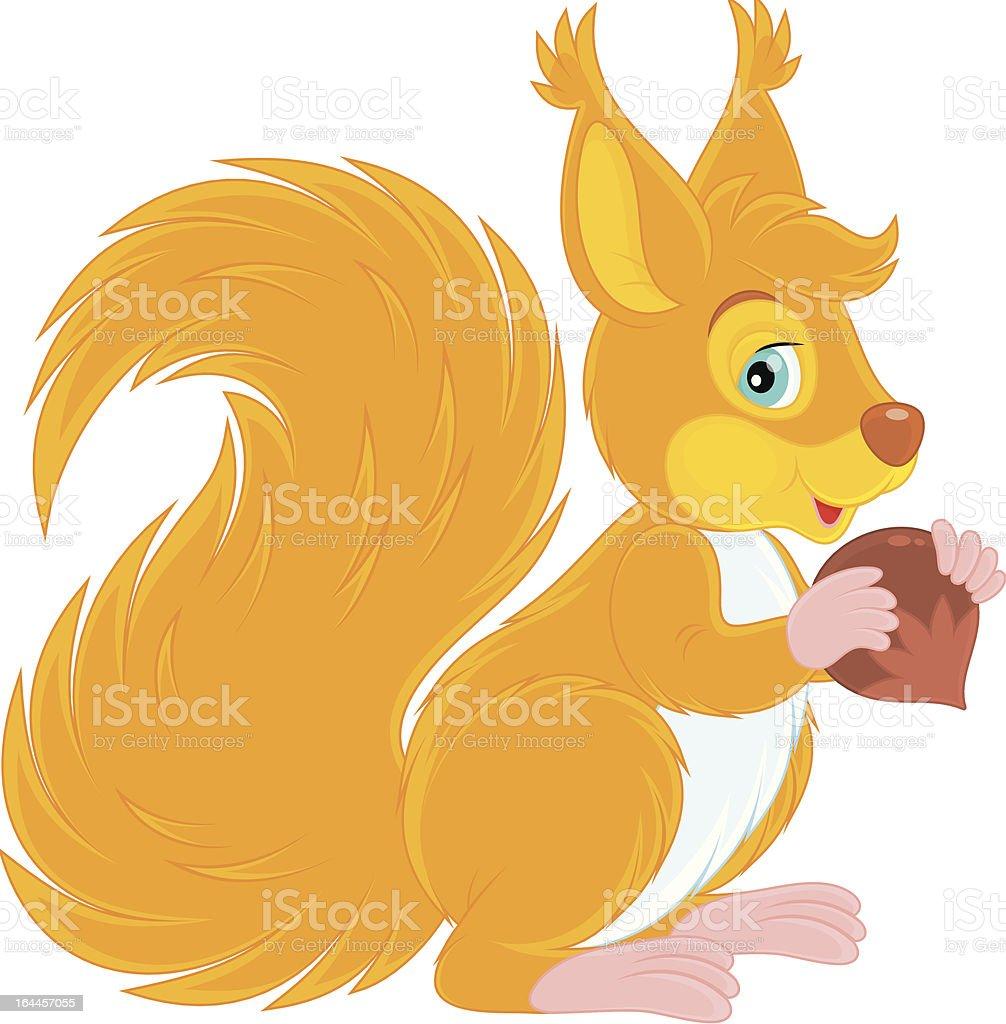 Squirrel royalty-free stock vector art