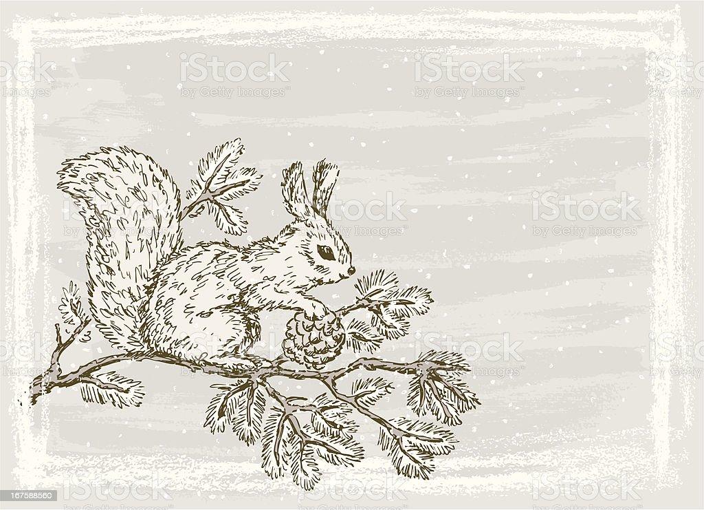 squirrel on a branch vector art illustration