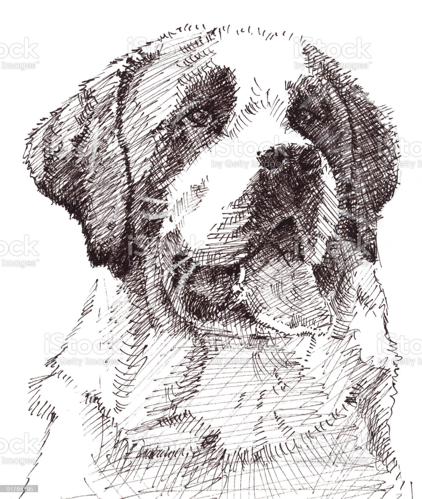 St Bernard Dog royalty-free stock vector art