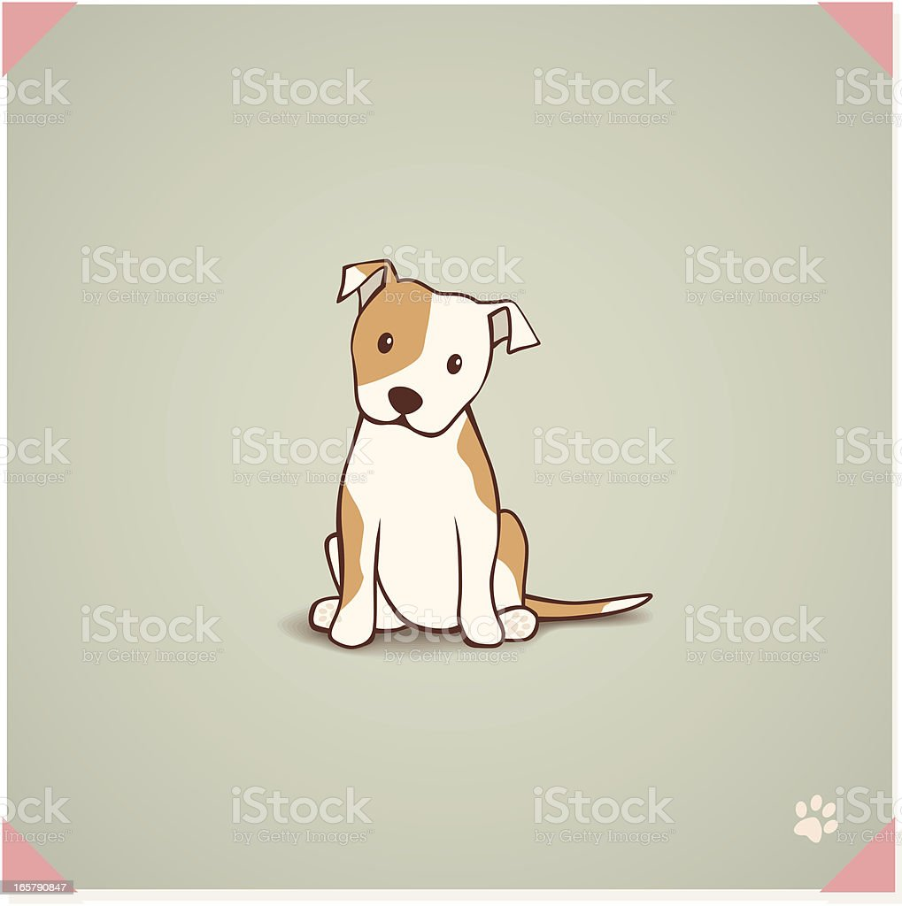 Staffordshire Bull Terrier Puppy vector art illustration