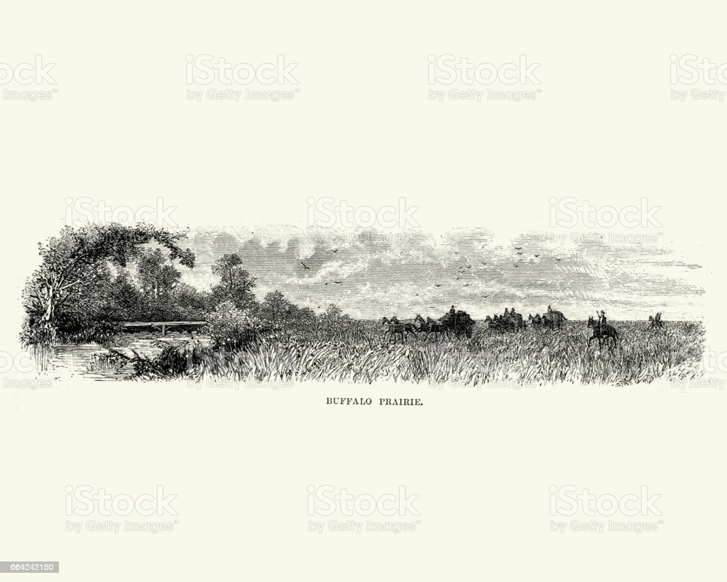 Stagecoach travelling across the Buffalo Prairiem 19th Century vector art illustration