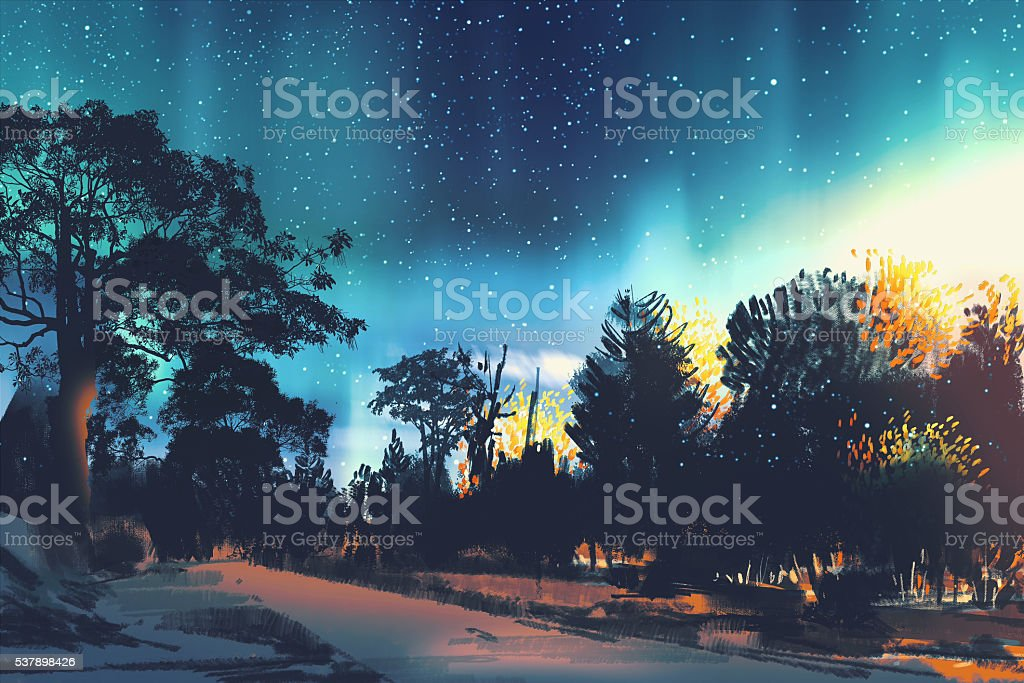 star field above the trees in forest,night scenery vector art illustration